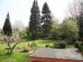 Garten Bild 1.png