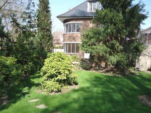 Garten Blick zum Haus